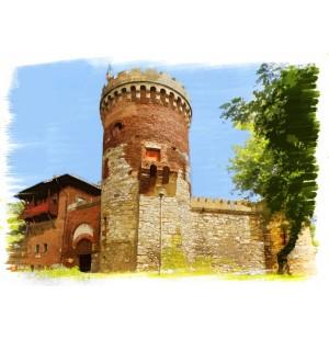 Castelul Tepes din Parcul Carol